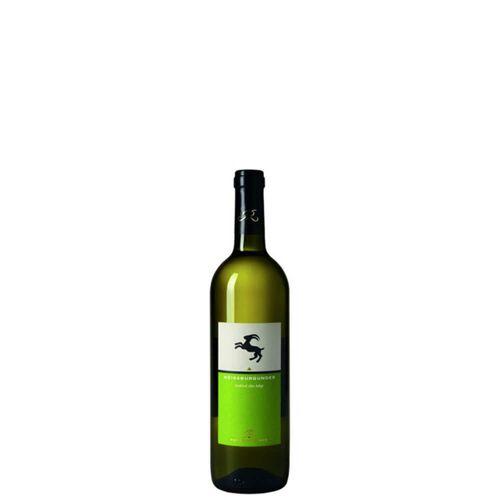 Hans Rottensteiner Alto Adige Pinot Bianco Doc 2019