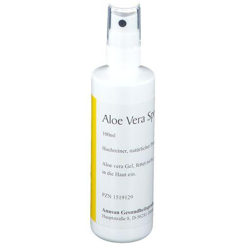 no brand Aloe Vera Spray 100 ml Sprühflasche