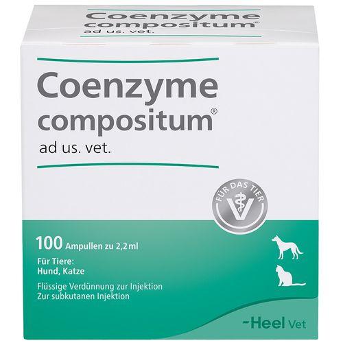 Biologische Heilmittel Heel GmbH Coenzyme compositum ad us. vet. 100 St Ampullen