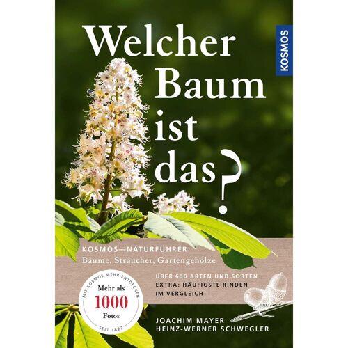 WELCHER BAUM IST DAS? -  Tiere, Pflanzen und Garten