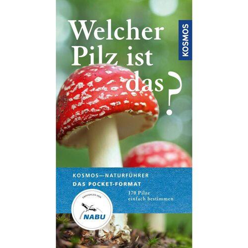 Welcher Pilz ist das? -  Tiere, Pflanzen und Garten
