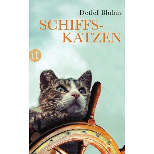 Schiffskatzen - Sachbuch