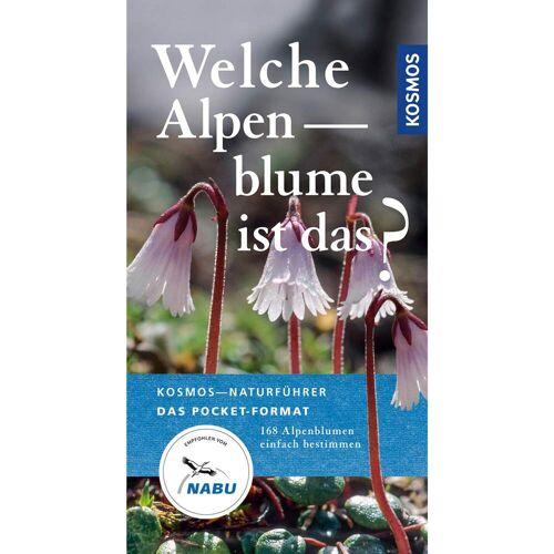 Welche Alpenblume ist das? -  Tiere, Pflanzen und Garten