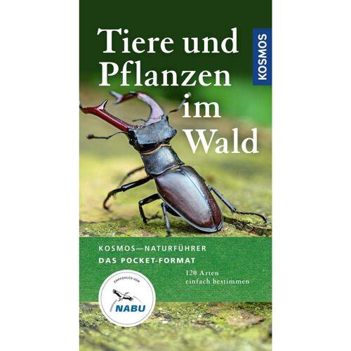TIERE UND PFLANZEN IM WALD -  Tiere, Pflanzen und Garten