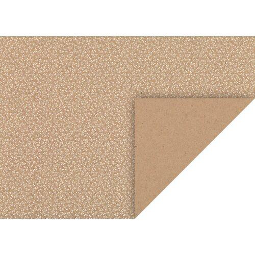 VBS Kraftpapier »Mistel«, 50 cm x 70 cm