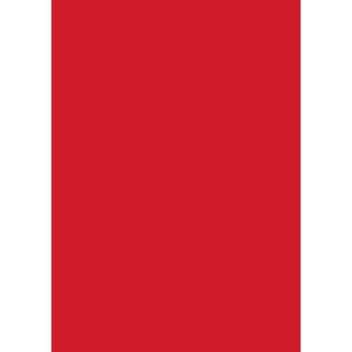 Folia Papierkarton »Tonkarton«, 50 cm x 70 cm, Rot