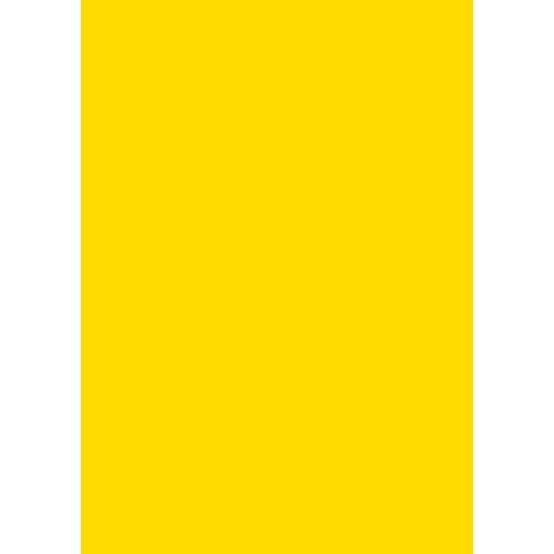 Folia Papierkarton »Tonkarton«, 50 cm x 70 cm, Gelb