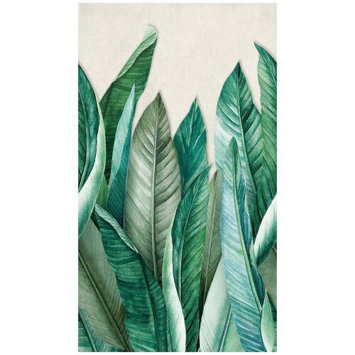 Bodenmeister Fototapete »Bananenblätter Dschungel grün«, Rolle 2,80x1,59m, grün
