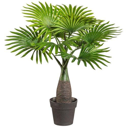 Creativ green Kunstpalme »Palme Mini« Palme, , Höhe 45 cm, im Kunststofftopf