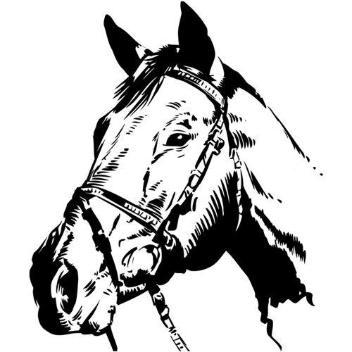 Home affaire Wandtattoo »Pferdekopf«