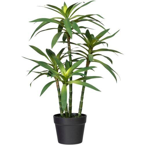 Creativ green Künstliche Zimmerpflanze »Dracaena fragans« Dracaena fragans, , Höhe 65 cm
