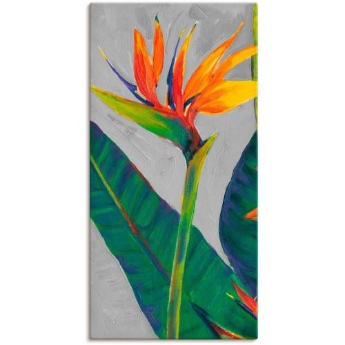 Artland Wandbild »Paradiesvogel I«, Pflanzen (1 Stück)