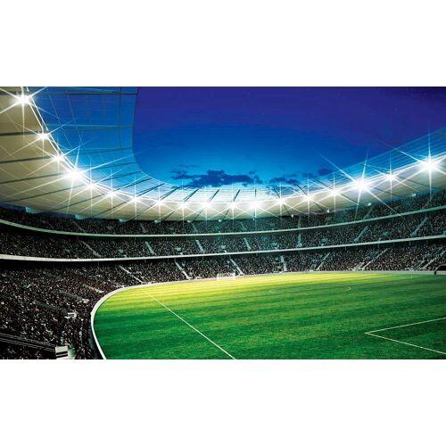 Home affaire Fototapete »Fußballstadion«, 254/184 cm, blau/grün