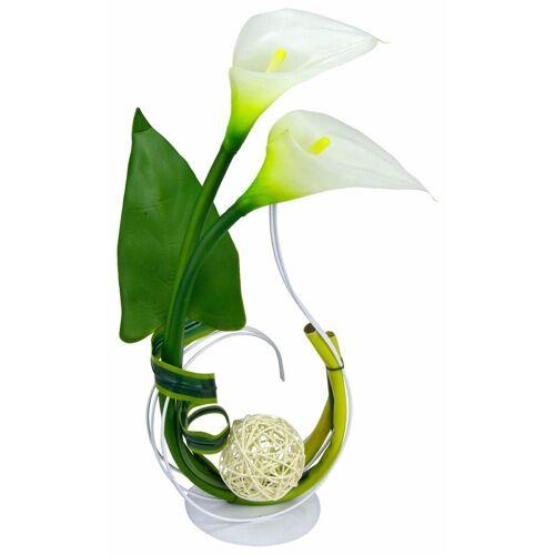 I.GE.A. Kunstpflanze »Calla« Calla, , Höhe 40 cm