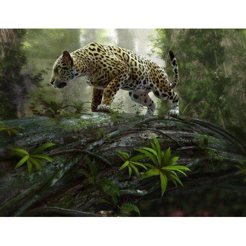 Home affaire Fototapete »Jaguar on the Prowl«