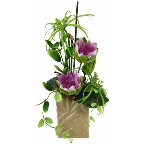 I.GE.A. Kunstpflanze »Seerose« Seerose, , Höhe 48 cm