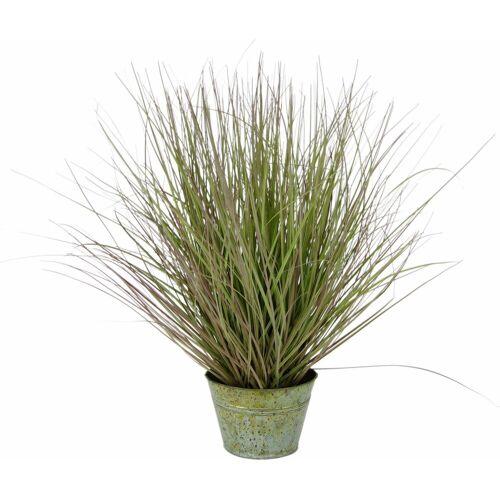 I.GE.A. Kunstpflanze »Grasbusch« Gras, , Höhe 52 cm