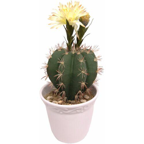 I.GE.A. Kunstpflanze »Kugelkaktus mit Blüte« Kugelkaktus, , Höhe 30 cm