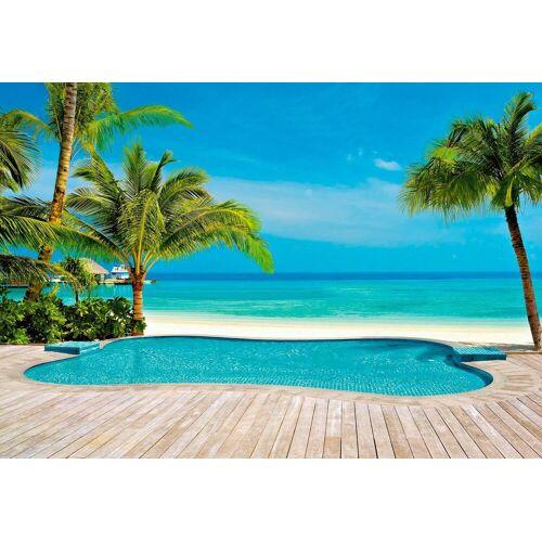 Fototapete »Palmen Pool«