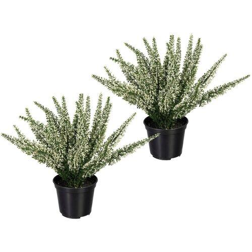 Creativ green Künstliche Zimmerpflanze »Erikabusch« Erikabusch, , Höhe 26 cm, 2er Set, weiß