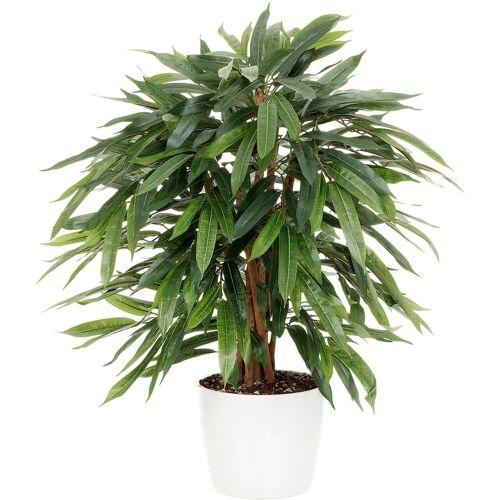 Kunstpflanze »Weeping-Ficus«, grün