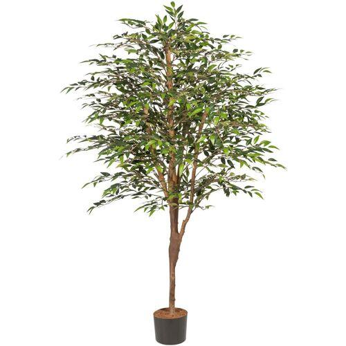Kunstpflanze »Ficus Benjamini«