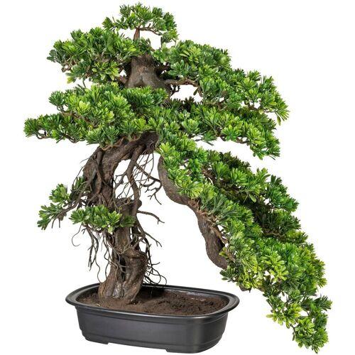 Creativ green Kunstpflanze »Bonsai Podocarpus«, , Höhe 65 cm