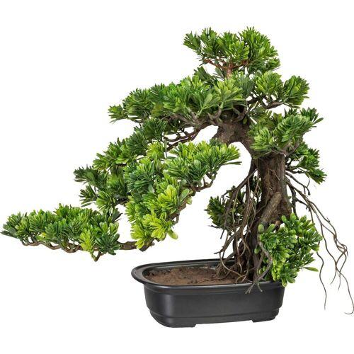 Creativ green Kunstpflanze »Bonsai Podocarpus«, , Höhe 40 cm