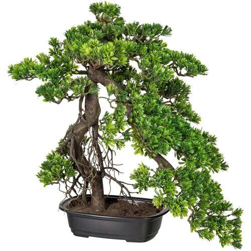 Creativ green Kunstpflanze »Bonsai Podocarpus«, , Höhe 55 cm