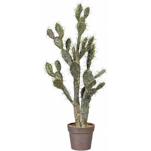 Kunstpflanze »Kaktus Opuntie«, grün