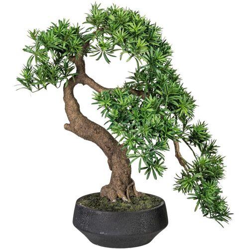 Creativ green Kunstpflanze »Bonsai Podocarpus«, , Höhe 75 cm
