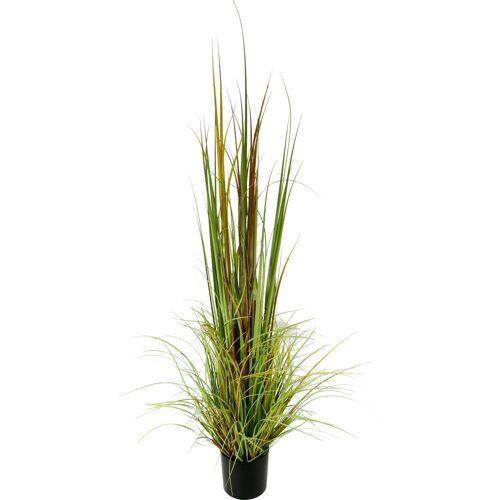 Kunstpflanze »Gras im Topf«, Höhe 165 cm, bunt