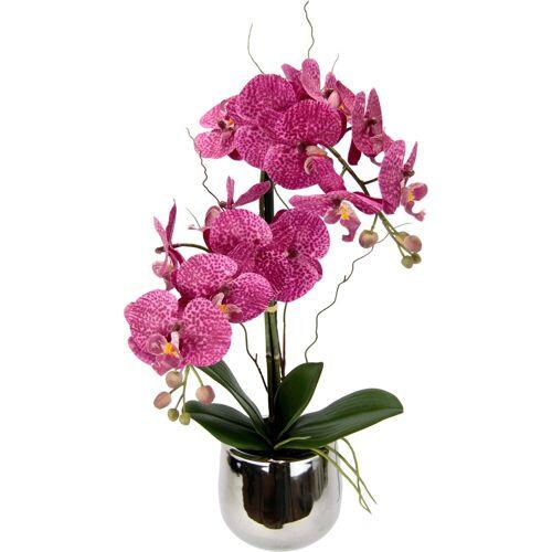 Kunstpflanze »Phalaenopsis im Topf« Phalaenopsis, Höhe 45 cm, dunkelrosa