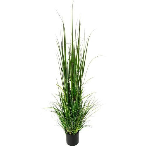 Kunstpflanze »Gras im Topf«, Höhe 165 cm, grün