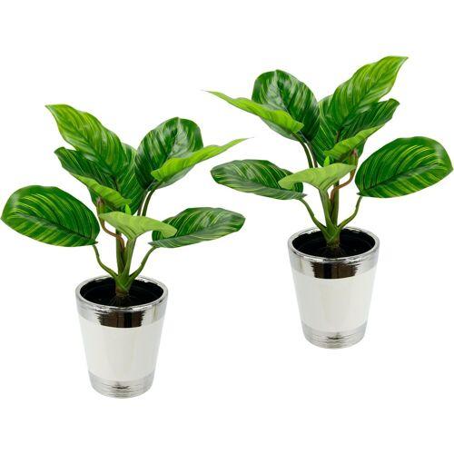 I.GE.A. Kunstpflanze »Maranthuspflanze im Topf« Maranthuspflanze, , Höhe 36 cm