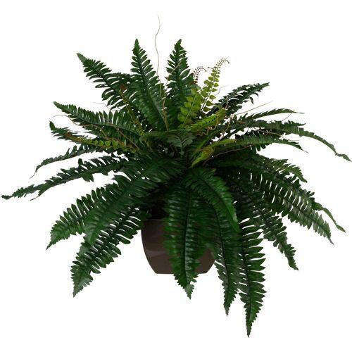 Creativ green Kunstpflanze Kunstpflanze, , Höhe 55 cm