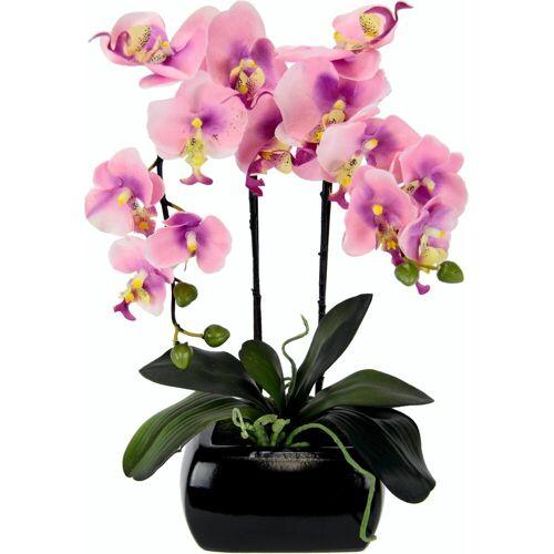 I.GE.A. Kunstpflanze Phalaenopsis, , Höhe 58 cm, rosa