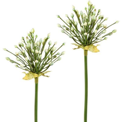 Creativ green Kunstblume Kunstblume, , Höhe 70 cm, Höhe 70 cm (2er Set), weiß