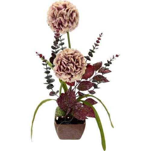 I.GE.A. Kunstpflanze Allium, , Höhe 53 cm, Arrangement im Topf