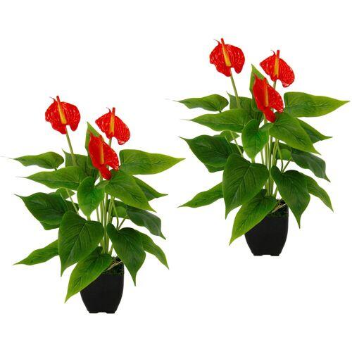 I.GE.A. Kunstpflanze »Anthurienpflanze« Anthurie, , Höhe 40 cm