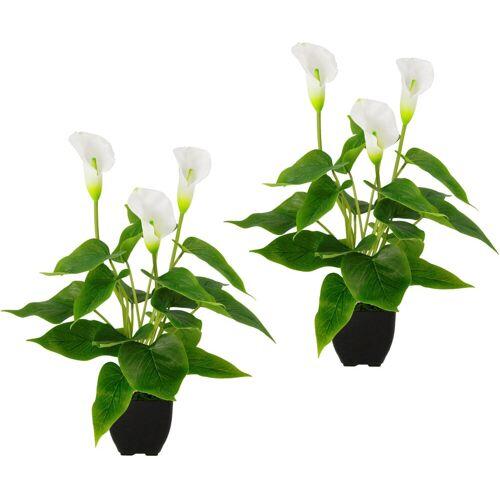 Kunstpflanze »Callapflanze« Calla, Höhe 40 cm