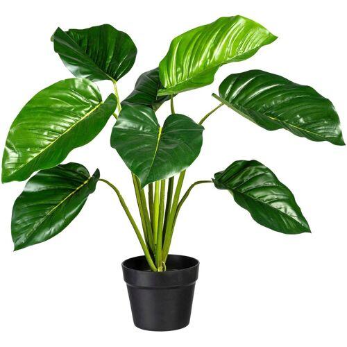 Creativ green Künstliche Zimmerpflanze »Philodendron« Philodendron, , Höhe 65 cm