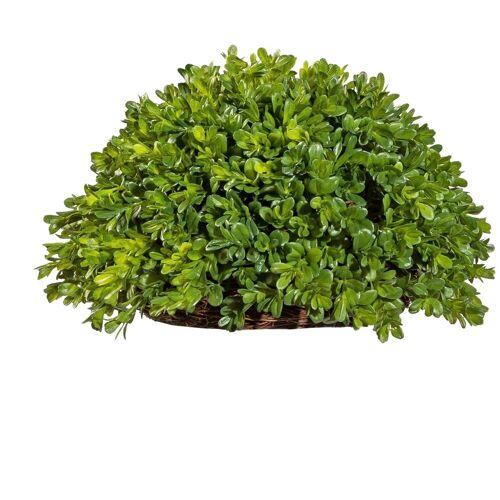 Creativ green Kunstpflanze »Buchsbaum Halbkugel« Buchsbaum, , Höhe 21 cm
