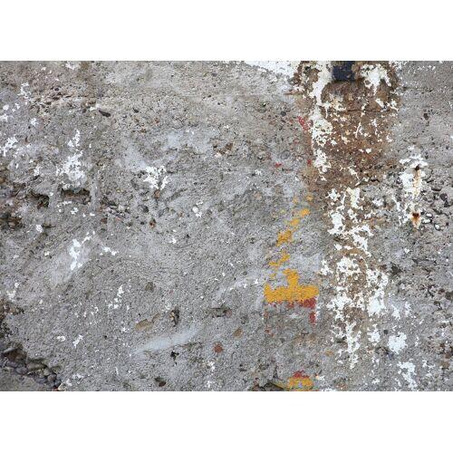 living walls Fototapete »Vintage Beton«