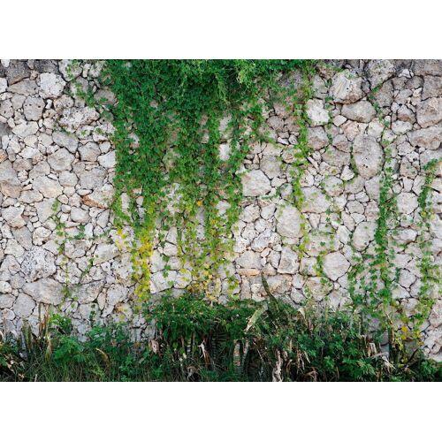 living walls Fototapete »Natursteinmauer Vlies«, glatt, (1 St), 350 x 255 cm