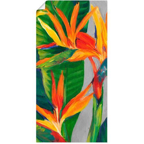 Artland Wandbild »Paradiesvogel II«, Pflanzen (1 Stück)