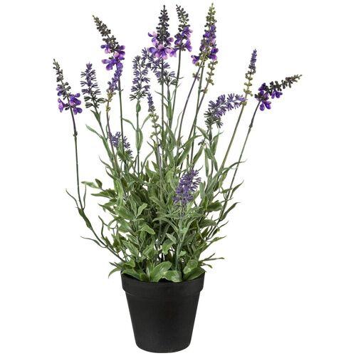 Creativ green Kunstpflanze »Lavendel«, , Höhe 48 cm, im Topf