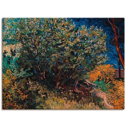 Artland Wandbild »Fliederstrauch. 1889«, Pflanzen (1 Stück)