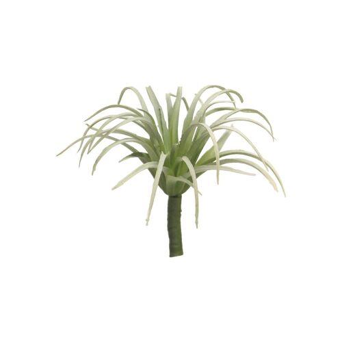 VBS Kunstpflanze »Sukkulente Tillandsia Maureana«, , 15 cm