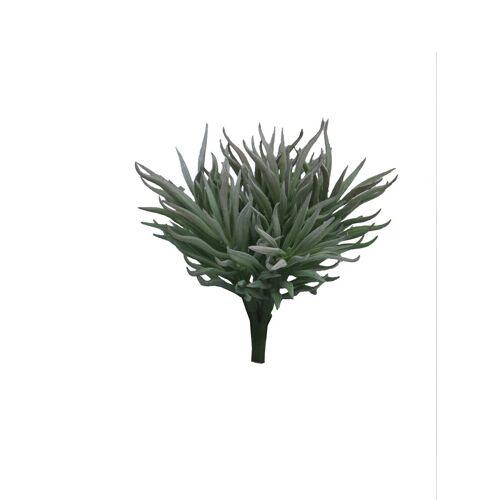 VBS Kunstpflanze »Sukkulente Crassula Himalaya«, , 15 cm